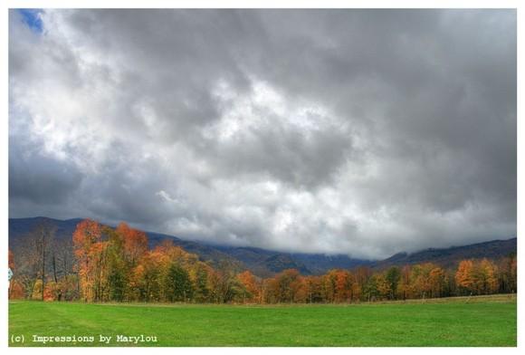 Vermont 36
